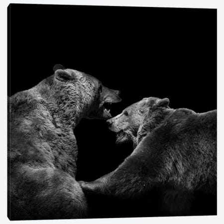 Two Bears In Black & White Canvas Print #LUK23} by Lukas Holas Canvas Art