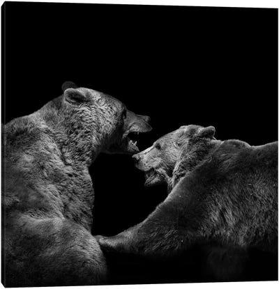 Two Bears In Black & White Canvas Art Print