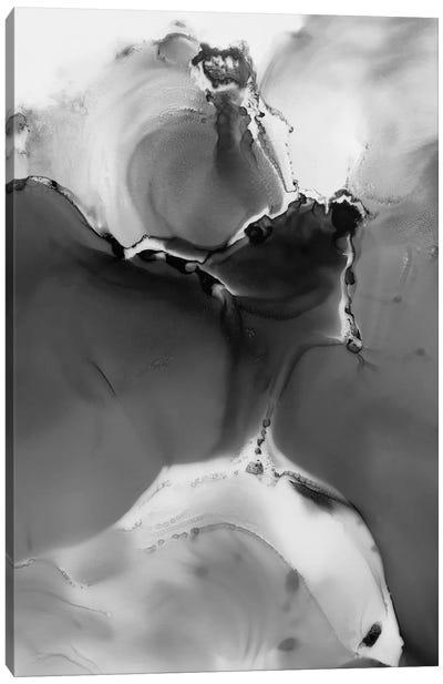 Grey Storm Canvas Art Print