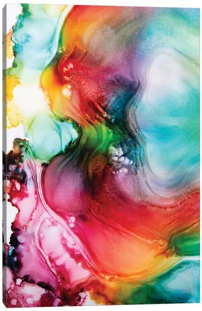 The Rainbow Waterfall Canvas Art Print