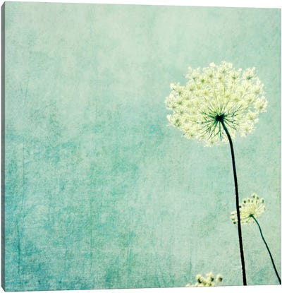 Efflorescence Canvas Art Print