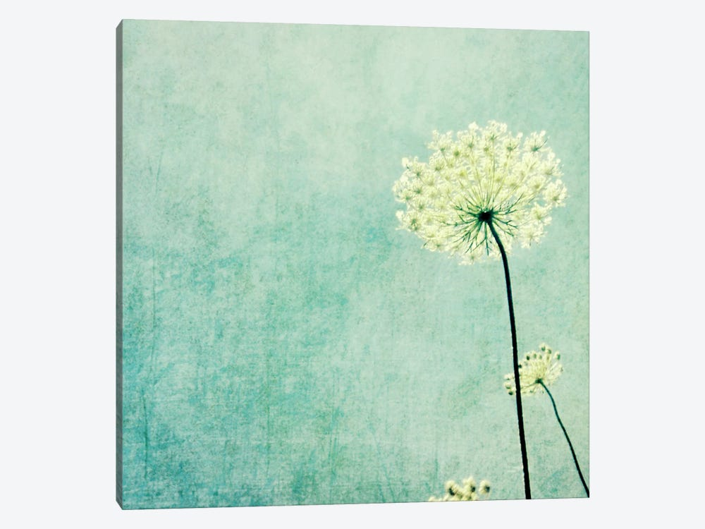 Efflorescence by Lupen Grainne 1-piece Canvas Art