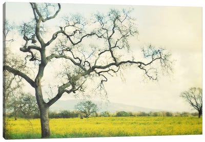 Green Gold Canvas Art Print