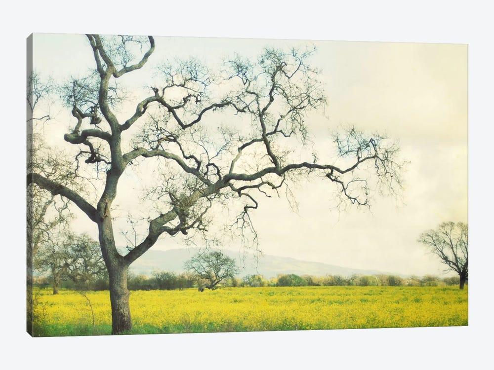 Green Gold by Lupen Grainne 1-piece Art Print