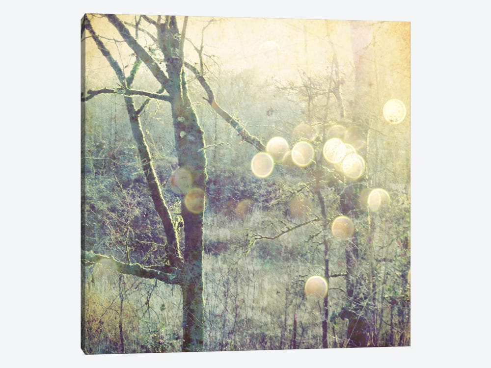 Into The Mystic by Lupen Grainne 1-piece Canvas Print