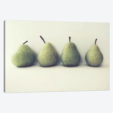 Take Four Canvas Print #LUP29} by Lupen Grainne Art Print