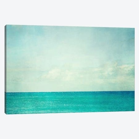 Aqua Dream Canvas Print #LUP2} by Lupen Grainne Canvas Print