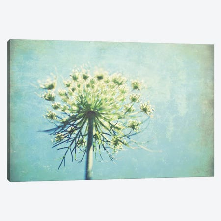 True Blue Canvas Print #LUP31} by Lupen Grainne Canvas Art