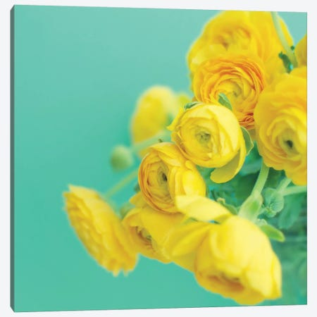 Happy Together  Canvas Print #LUP34} by Lupen Grainne Canvas Print