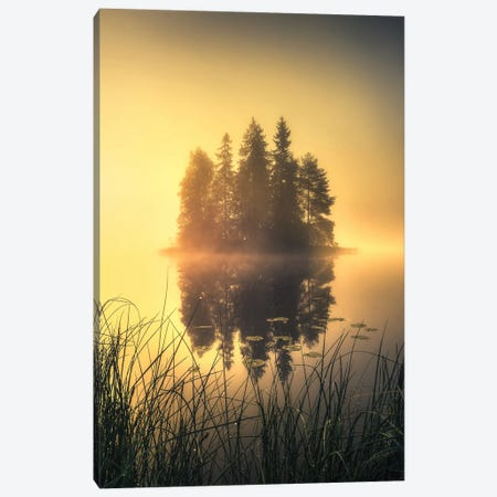 Mystic Fog Canvas Print #LUR107} by Lauri Lohi Canvas Art