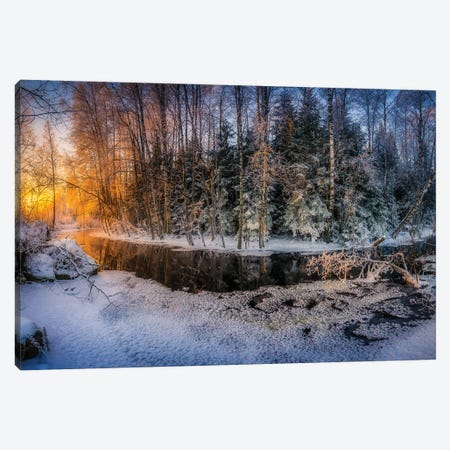 Sunny And Frosty Canvas Print #LUR119} by Lauri Lohi Canvas Art