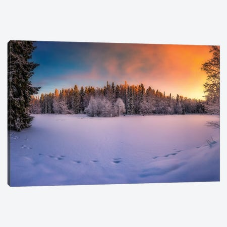 Winter Light Canvas Print #LUR133} by Lauri Lohi Canvas Wall Art