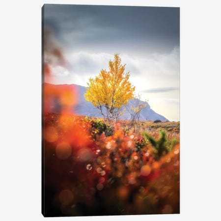 Lonely I Canvas Print #LUR41} by Lauri Lohi Art Print