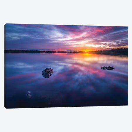 Vivid Canvas Print #LUR53} by Lauri Lohi Canvas Art