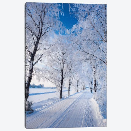Winter Road Canvas Print #LUR63} by Lauri Lohi Canvas Art Print