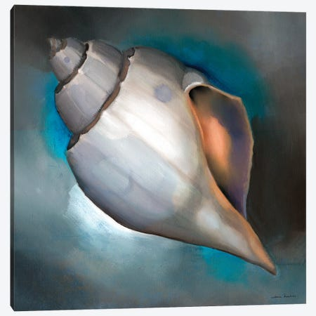 Sea Shell Glow Canvas Print #LUS2} by Louise Montillo Canvas Wall Art