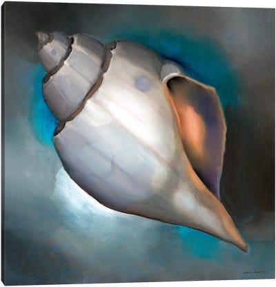 Sea Shell Glow Canvas Art Print