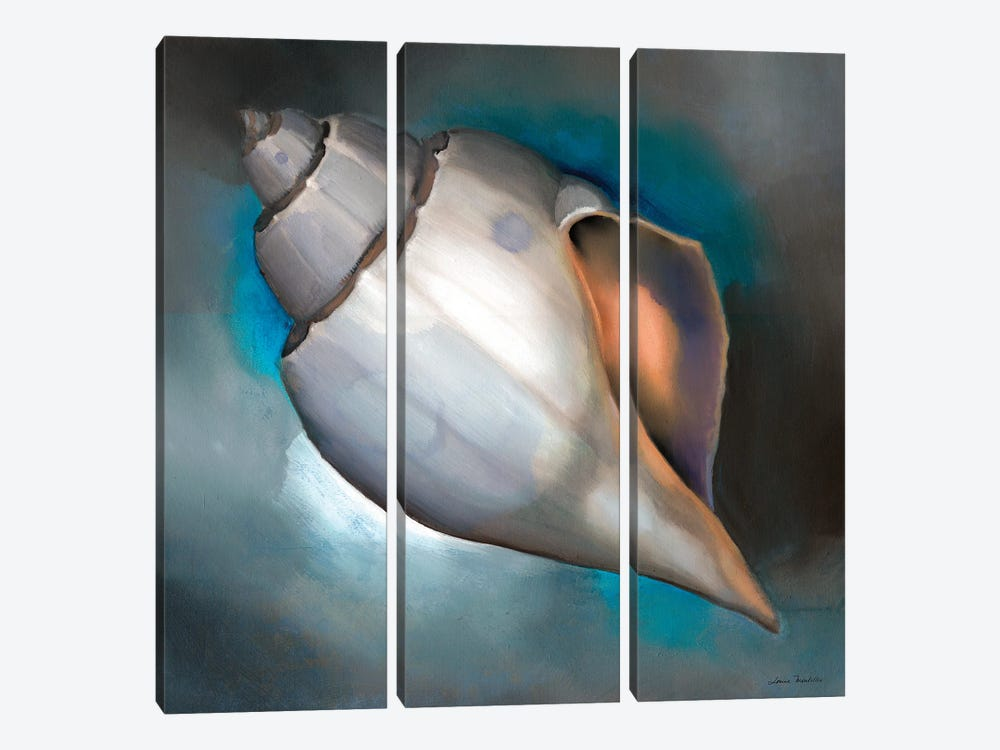 Sea Shell Glow by Louise Montillo 3-piece Canvas Art