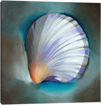 Clam Shell Glow Canvas Art Print