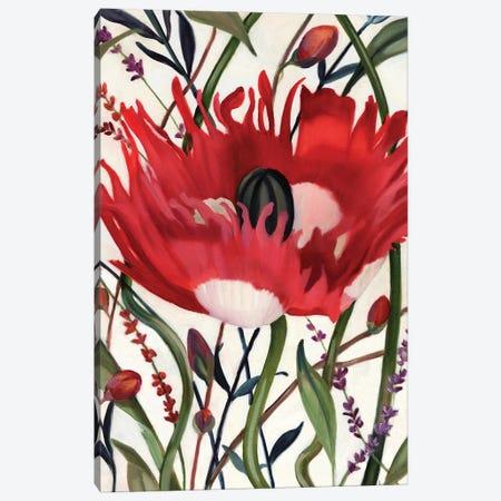Poppy Dance Open Canvas Print #LUS4} by Louise Montillo Art Print
