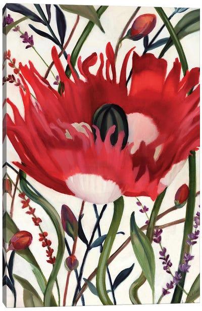 Poppy Dance Open Canvas Art Print