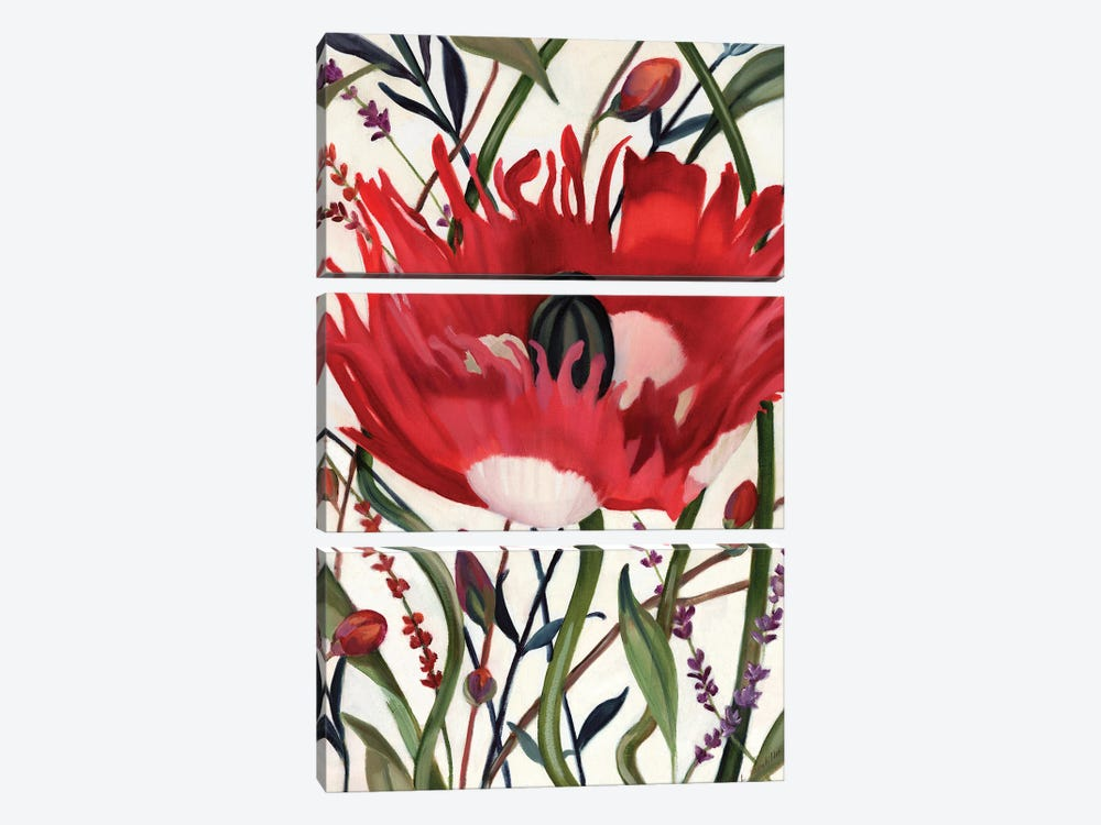 Poppy Dance Open by Louise Montillo 3-piece Canvas Wall Art