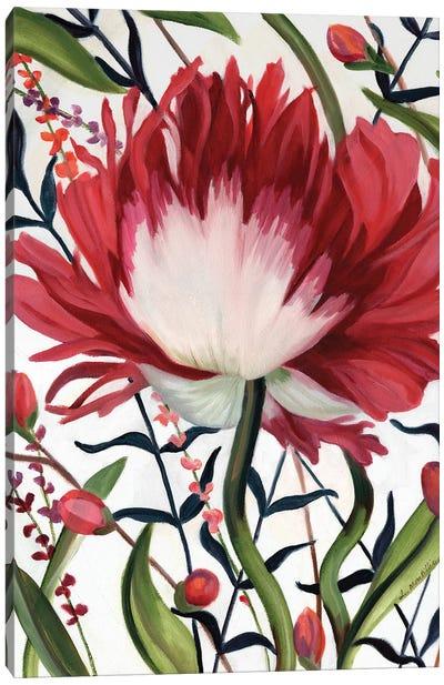 Poppy Dance Closed Canvas Art Print