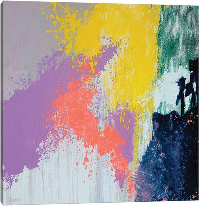 Mix My Desires I Canvas Art Print