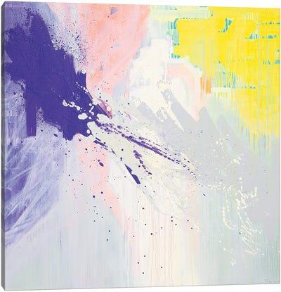 Mix My Desires II Canvas Art Print