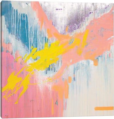 Mix My Desires III Canvas Art Print