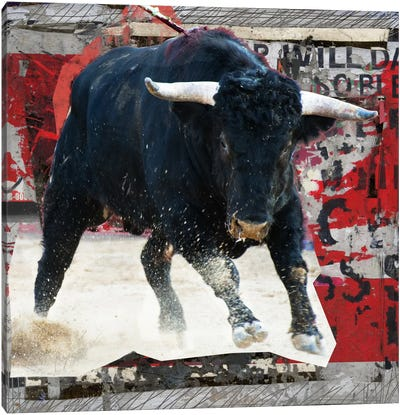 Mad Toro Canvas Art Print