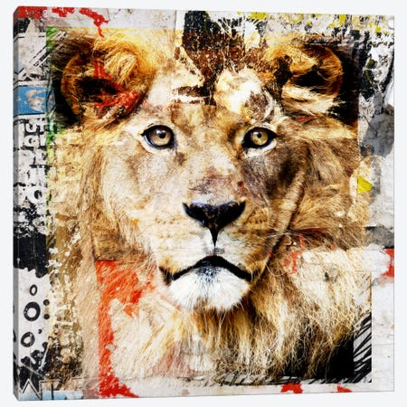 Lion Canvas Print #LUZ44} by Luz Graphics Canvas Wall Art