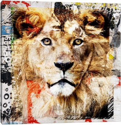 Lion Canvas Print #LUZ44