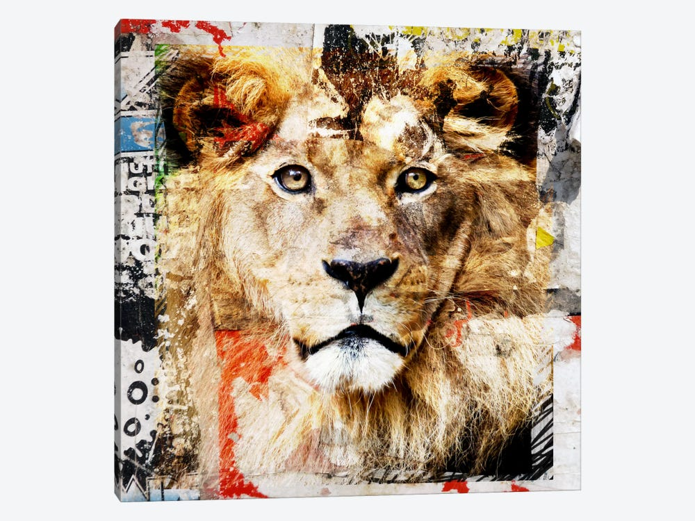 Lion by Luz Graphics 1-piece Canvas Art Print