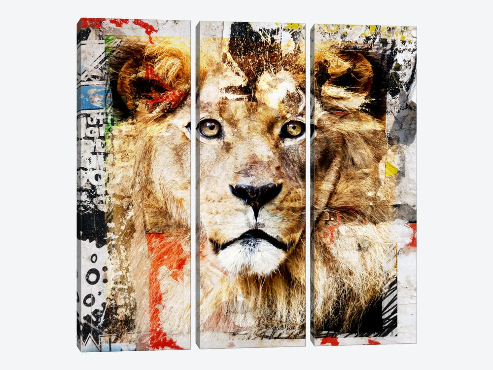 Lion by Luz Graphics 3-piece Canvas Print