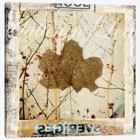 Autumn Leaf Canvas Print #LUZ45} by Luz Graphics Canvas Artwork