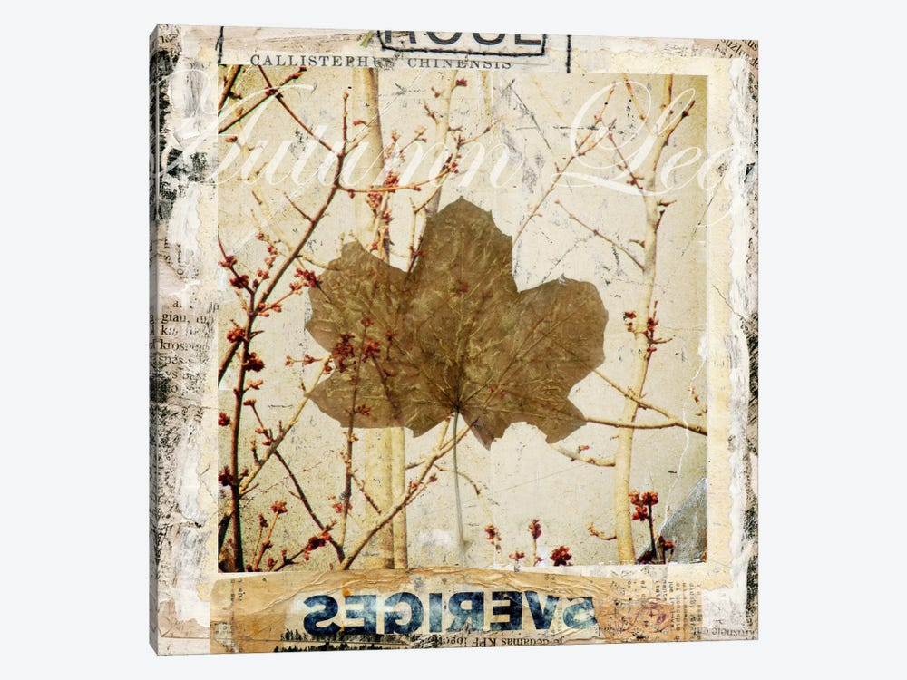 Autumn Leaf by Luz Graphics 1-piece Canvas Art