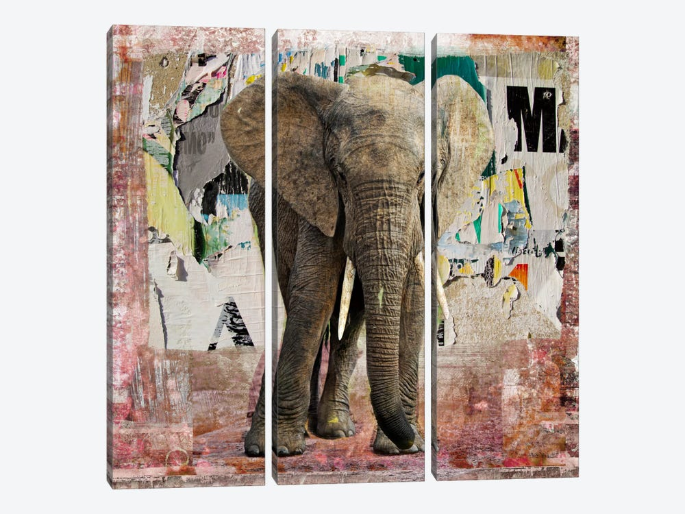 Elephant Torn Posters by Luz Graphics 3-piece Canvas Artwork