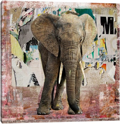 Elephant Torn Posters Canvas Art Print