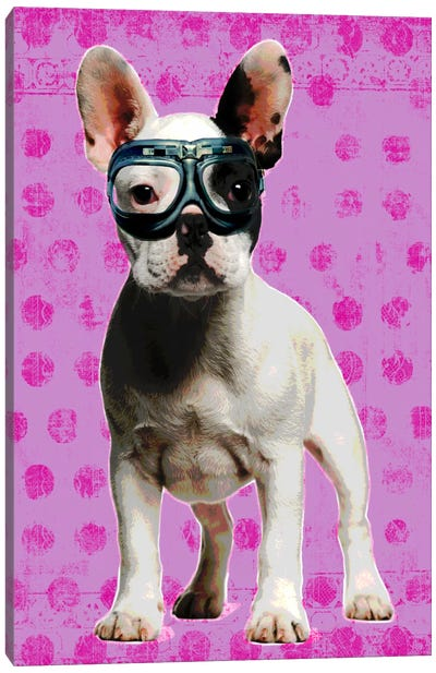 Bulldog Pink Canvas Art Print