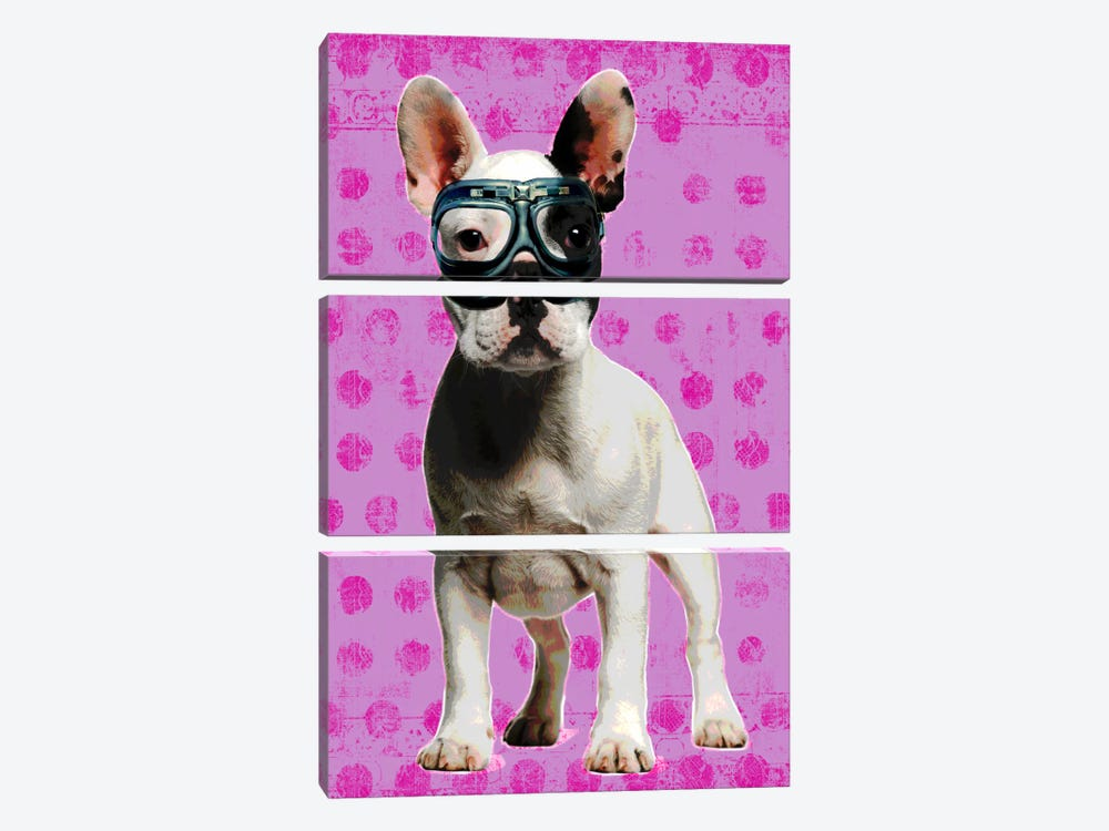 Bulldog Pink 3-piece Canvas Artwork
