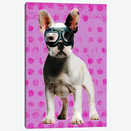 Bulldog Pink Canvas Print #LUZ63} by Luz Graphics Canvas Art Print