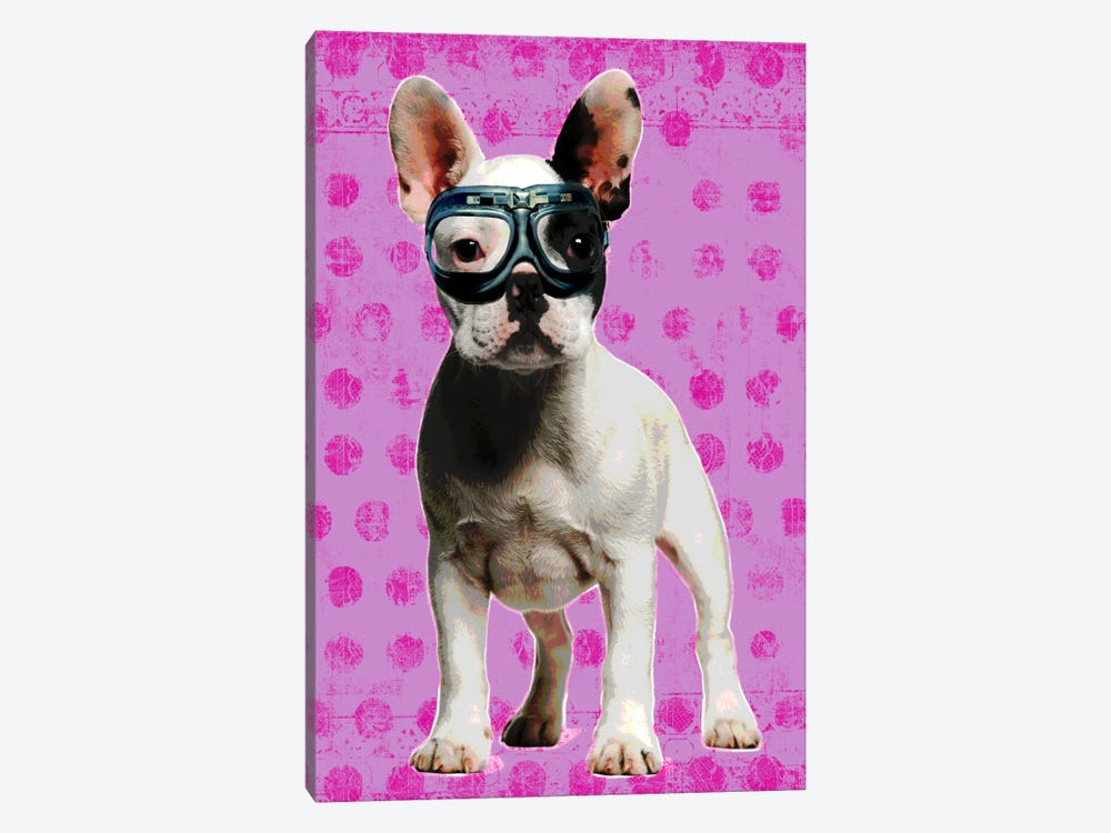 Bulldog Pink by Luz Graphics 1-piece Canvas Art