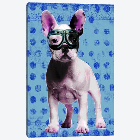 Bulldog Blue Canvas Print #LUZ64} by Luz Graphics Canvas Art