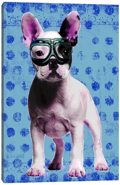 Bulldog Blue Canvas Art Print