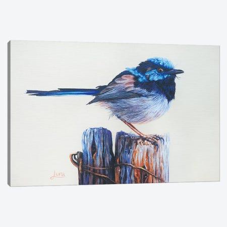 Sitting On Top Of The World Canvas Print #LVE100} by Luna Vermeulen Canvas Art Print