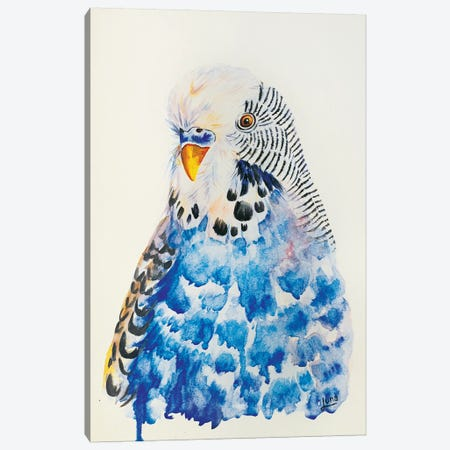 Tweet All About It Canvas Print #LVE118} by Luna Vermeulen Canvas Wall Art