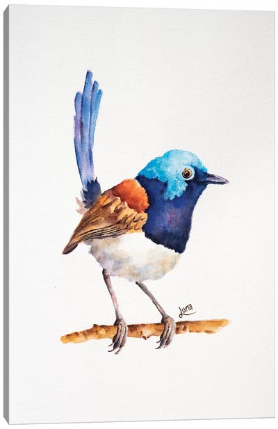 Chirpy Canvas Art Print