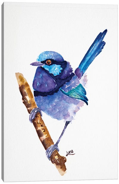 Blue Jeans Canvas Art Print