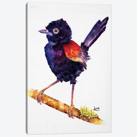 No Angel Canvas Print #LVE157} by Luna Vermeulen Art Print